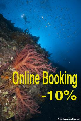 Online Booking Discount